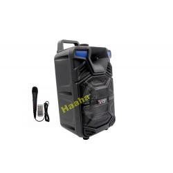 Głośnik Karaoke QS-601