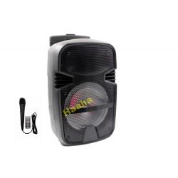 Głośnik Karaoke QS-800