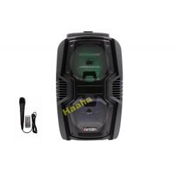 Głośnik Karaoke KIMISO QS-806