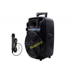 Głośnik bluetooth Karaoke KTS-1176