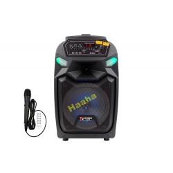 Głośnik Bluetooth Karaoke QS-811
