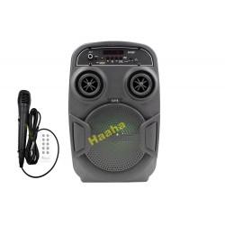 Głośnik Karaoke U316